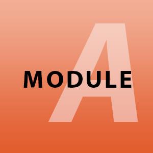 module-a