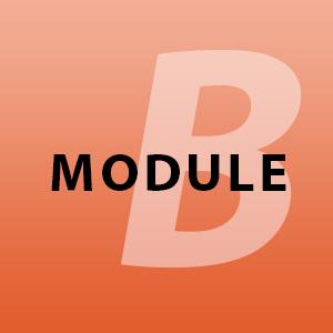 module-b