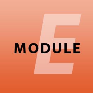 module-e